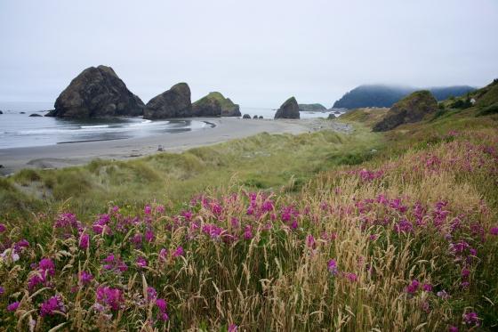 Oregon day 7 9