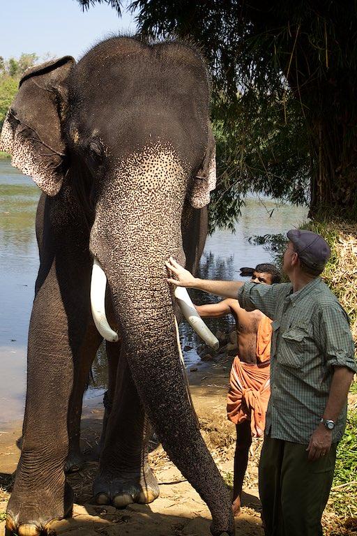 Elephant story 13