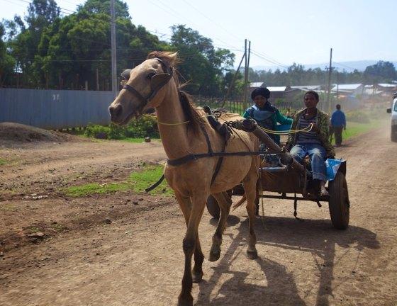 Ethiopia 17