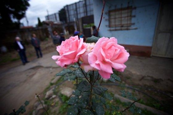 Guate 2