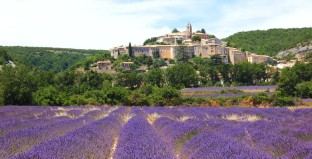 04c Provence-Lavender-fields-around-the-village-of-Banon-e1335231742569
