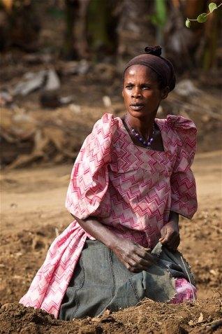 The Uganda countryside 21