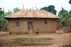 The Uganda countryside 7
